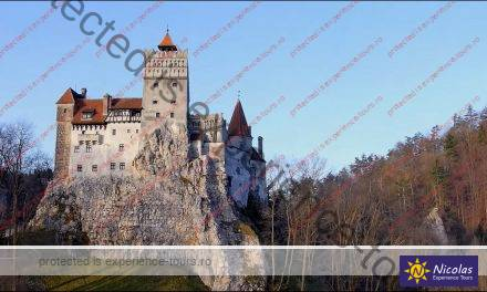 Private Trip To The Dracula Castle